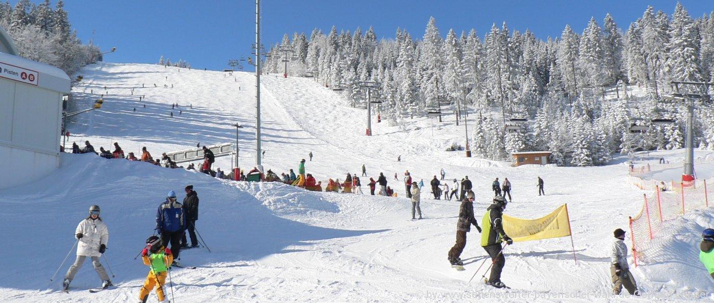 arber-skigebiet-familien-skifahren-winterurlaub-bauernhof-panorama-1400