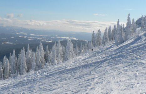 Familien mit Kindern Skiurlaub Bayerischer Wald großer Arber