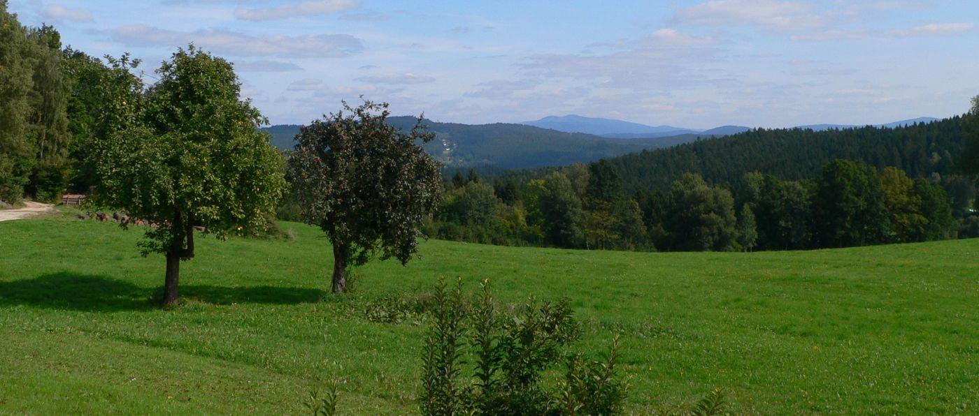 kopp-panoramabilder-ferienhof-bayerischer-wald-aussicht-landschaft-1400